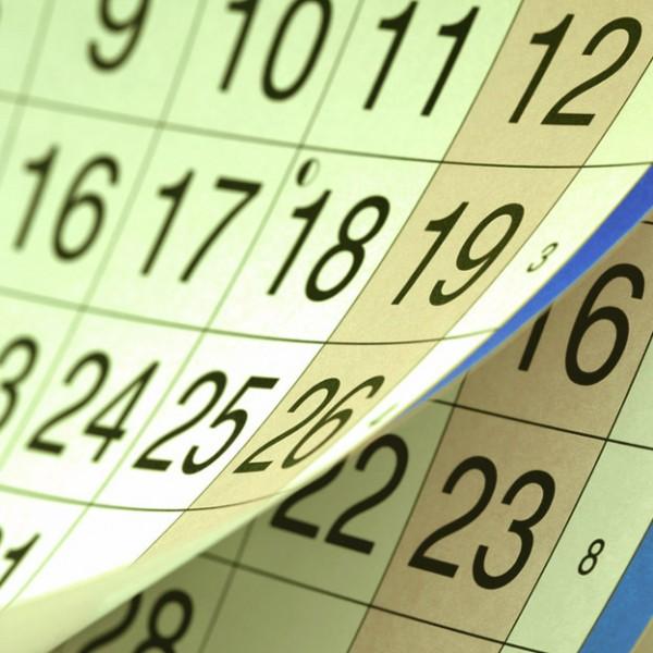 Jahreskalender 2019 mit Ferienzeiten Brandenburg