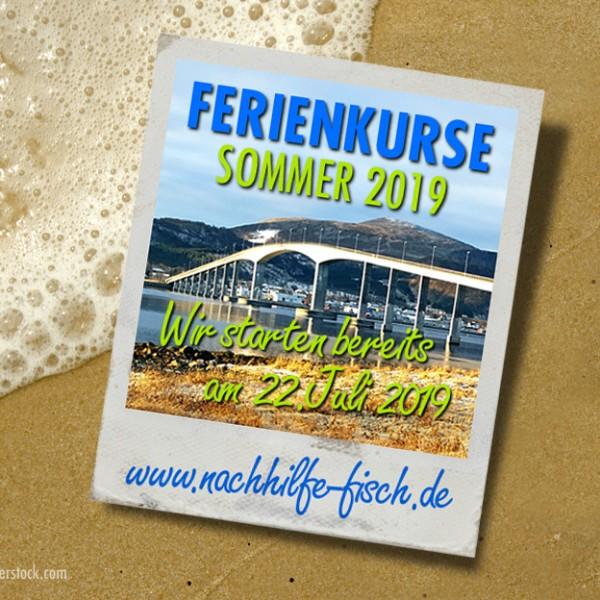 Eure Sommerferienkurse starten bereits am 22. Juli